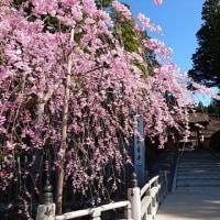 土生川正賢教授の中国語上級講座 高野山大学 聴講生 4月25日(火)
