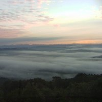 やや少ないが低い霧の海