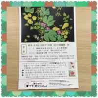植木良枝&万紀子 母娘「花の刺繍画」展