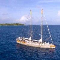 地球のために活躍するスクーナー船『タラ号』が神戸にやって来ます!!!
