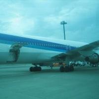 羽田空港内でマジかに見るANA機!
