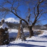 忍野雪景色~忍野村⑤
