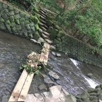 都内の渓谷でのんびり自然浴🌿