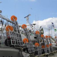 烏賊釣り船