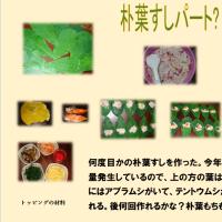 寿司・すし・susi・・・