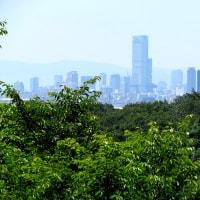 家の近所から大阪市街を望遠