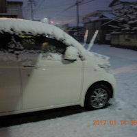 岐阜も大雪