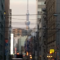 今日は東京でしたよ