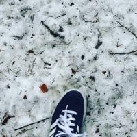 残雪を踏む