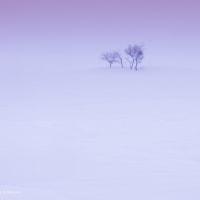 Silent scene