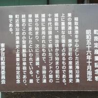 東伊豆町と捕鯨