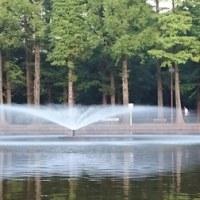 公園の噴水は何時までか…