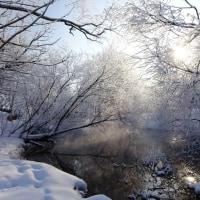 メン川 霧氷地帯