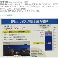IR総合型リゾート/売り上げはカジノが8割・・・名前をどうつけても、実態は【賭博場】
