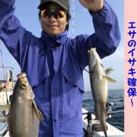 6/23の釣果