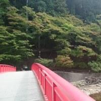 まだまだ早い香嵐渓でした。