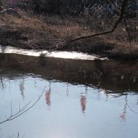 凍る高麗川