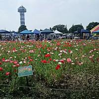 TOINマルシェ・木曽三川公園ハンドメイド市