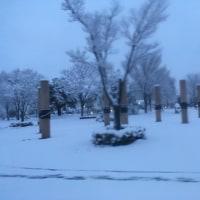 雪の朝は始発バスです!