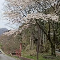 <「めがね橋 まだまだ春は 軽井沢」軽井沢川柳>
