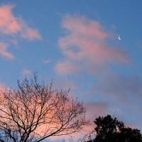 朝焼けの空~バラ色の雲と月