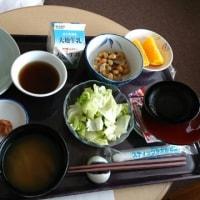 健康食、病院食,1600カロリー