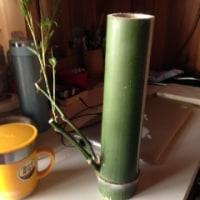 素材の青竹