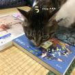 図書館の本〜その45〜