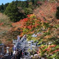 最後の紅葉と、雪の「大山阿夫利神社」