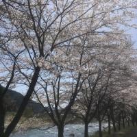 三月 風 + 四月 雨 → 五月 花