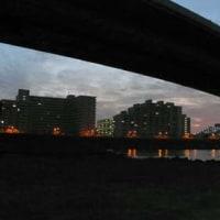 朝ポタ@荒川河口