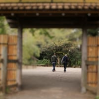 六義園 (文京区)