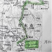 観桜新緑山行:白山
