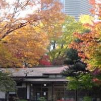 晩秋の小石川後楽園2―都立庭園へ行こう(その8)
