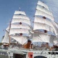 日本丸、総帆展帆。