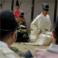 古式ゆかしく弓射矢 節分占い・住吉大社(大阪市)。    17・2月3日