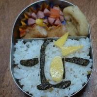 午後の運勢占い弁当~♪&・・・撃沈・・・リトルペンギン・・・