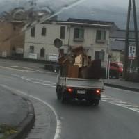 不用品タンス、机、本棚、食器棚等を回収、福岡での仕事しました