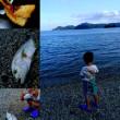 息子🐟魚釣りの練習