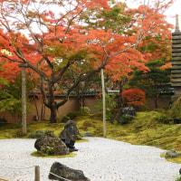 紅葉 円通院 #3