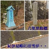 ウオーク・千早口駅~紀伊見峠駅