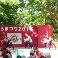 埼玉県、与野公園バラ祭り&3時のおやつは、文明堂。