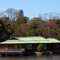 今年は、ここでお茶をいただきました。 (Photo No.11806)