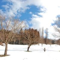 青空、駆ける白い丘。