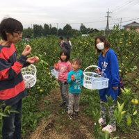 今日は、雨も降りましたが(^^)ご来園ありがとうございました。