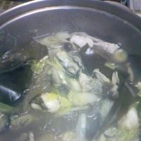 カキとタラの塩鍋