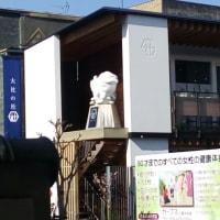 ずーなま キタ━(゜∀゜)━!って、