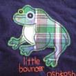 カエルTシャツ1。