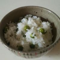 春一番に豆ご飯