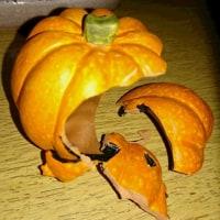 久しぶりのアレンジフラワー教室は、ハローウィンのアレンジ